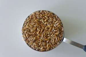 unwashed farro