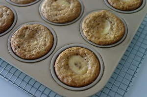 baked muffins in pan - close-up 1