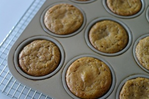 baked muffins in pan - close-up 2